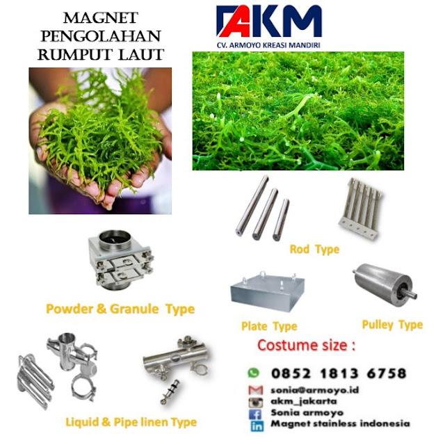 magnet separator rumput laut