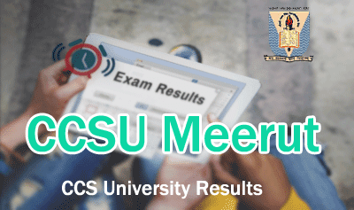 ccs university result 2019 - ccsu online ccsuniversity.ac.in 2019 result