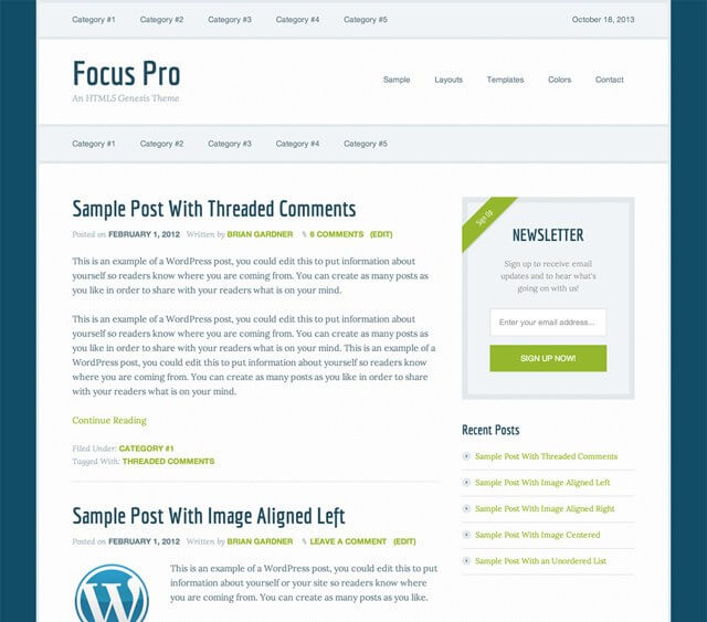 focuspro-blog-template