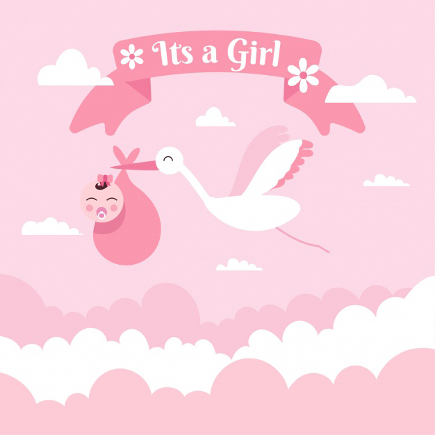 It's a girl baby shower Valentine background Free Vector