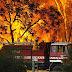 Οι πιο φονικές πυρκαγιές του 21ου αιώνα