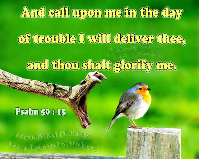 And call upon me in the day of trouble: I will deliver thee, and thou shalt glorify me