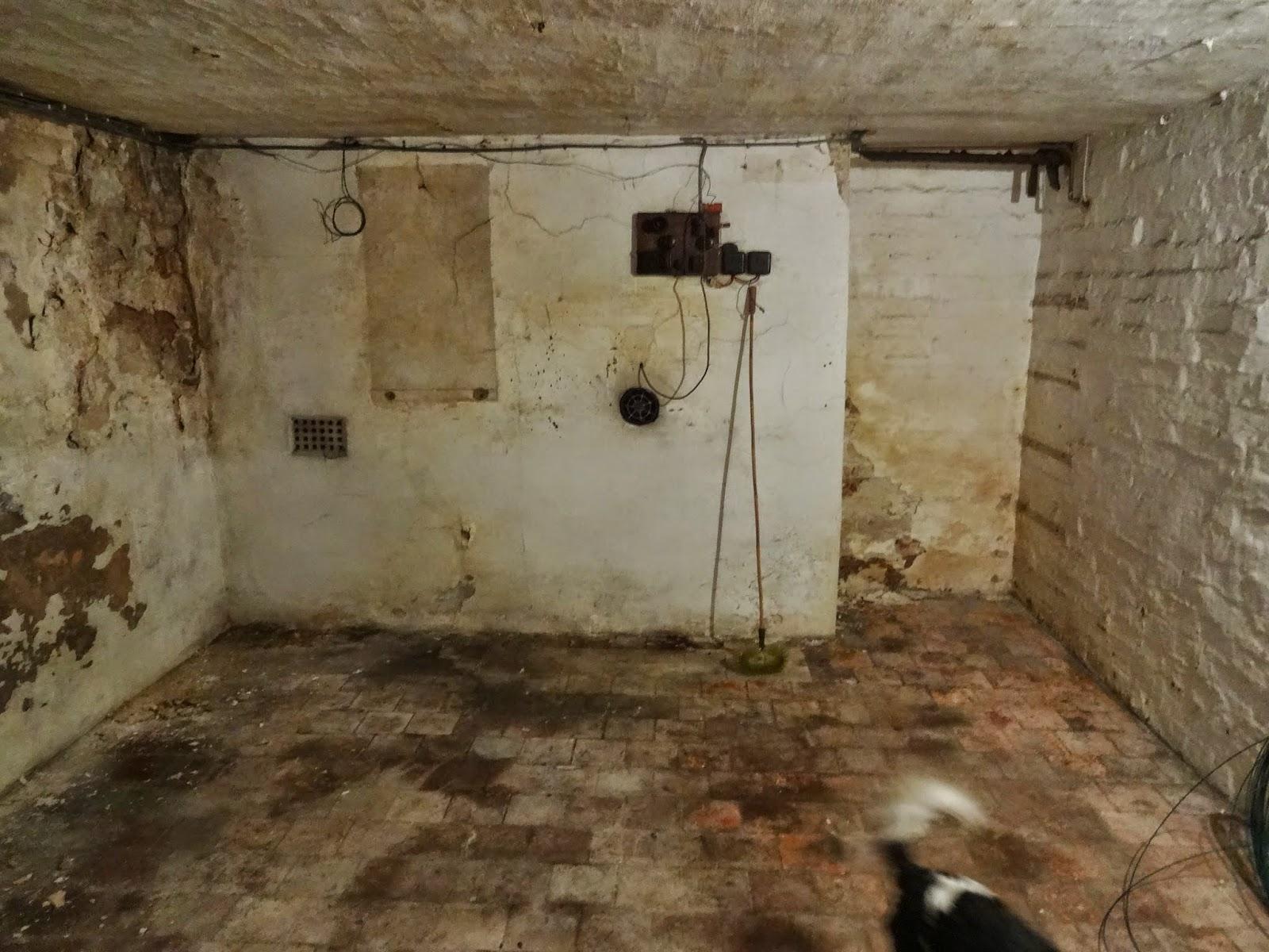 victorian cellar basement