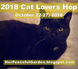 2018 Cat Lovers Hop