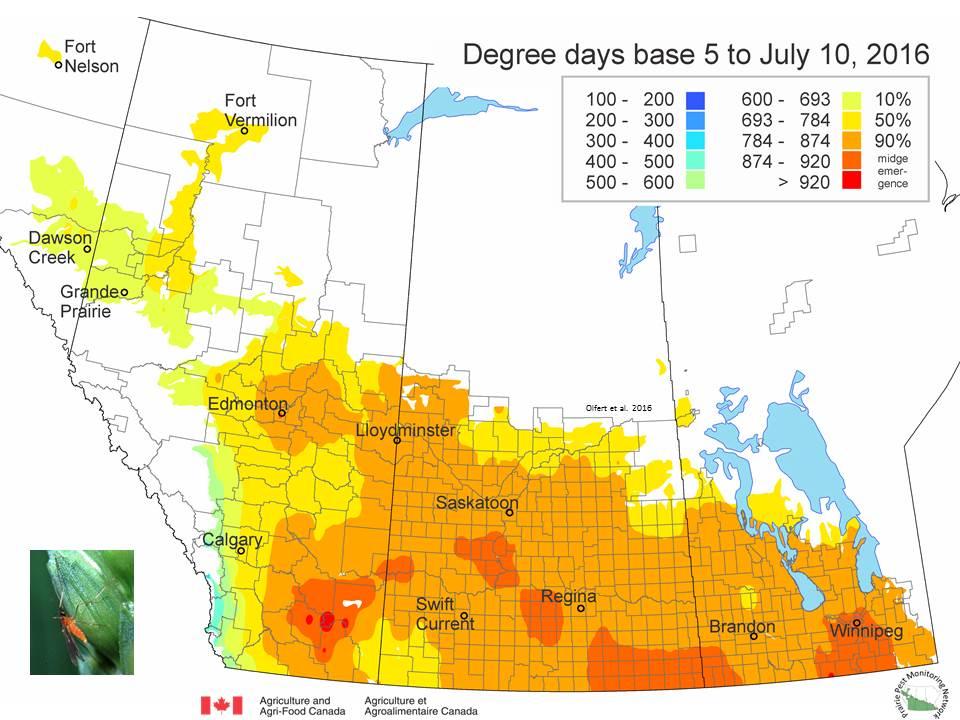 Prairie Pest Monitoring Network Blog Weekly Update July 13 2016
