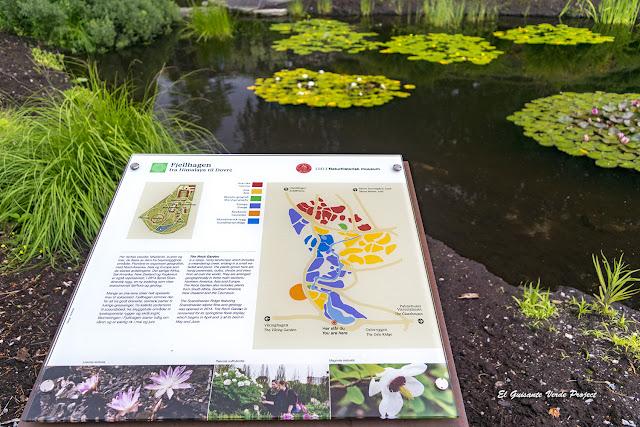 Jardin de Rocas - Jardín Botánico de Toyen, Oslo por El Guisante Verde Project