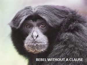 Bebel Without a Clause