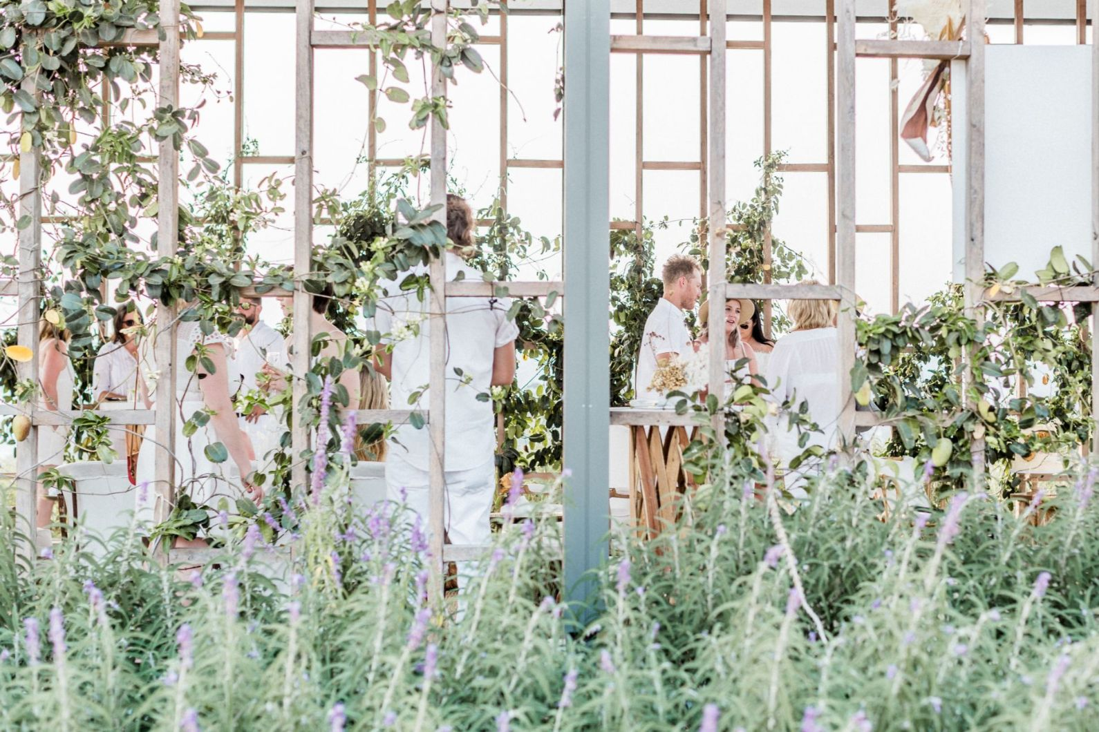 roost film co kooroomba lavender farm wedding venue photography styling boho luxe country