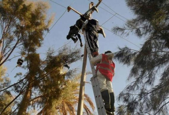 Photo: Man electrocuted while attempting to steal wires from an electric pole
