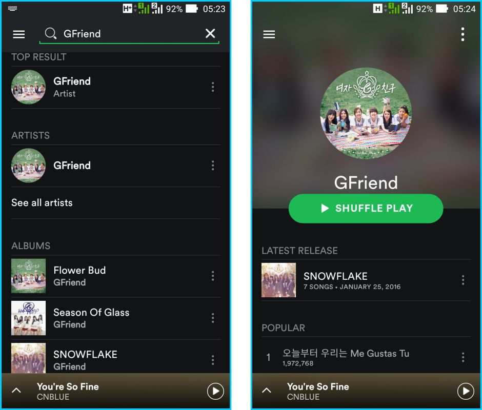 Spotify - Fitur Pencari Musik Pada Spotify