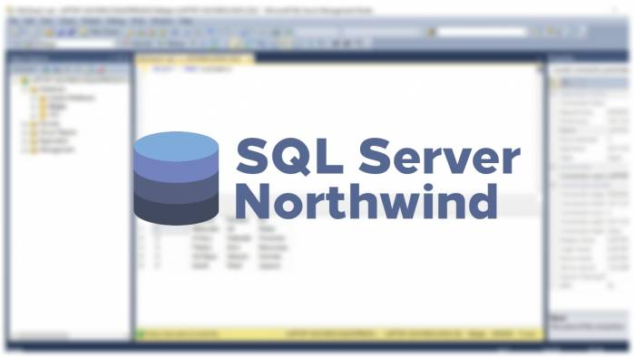 Cara Membuka File Database SQL Server