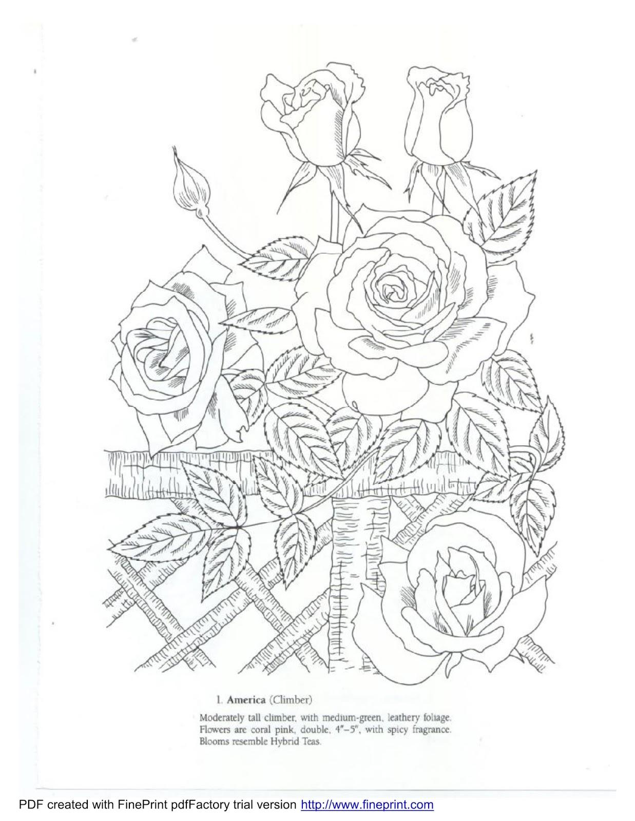 Bagi-Bagi Ajah: Favorite Roses Coloring Book (Dover