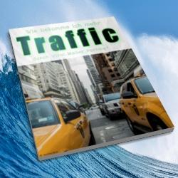 Geld verdienen mit Traffic-Portalen kostenloses eBook