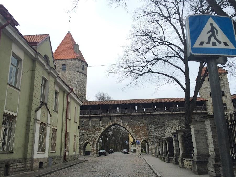 修道院門(Kloostrivärav)
