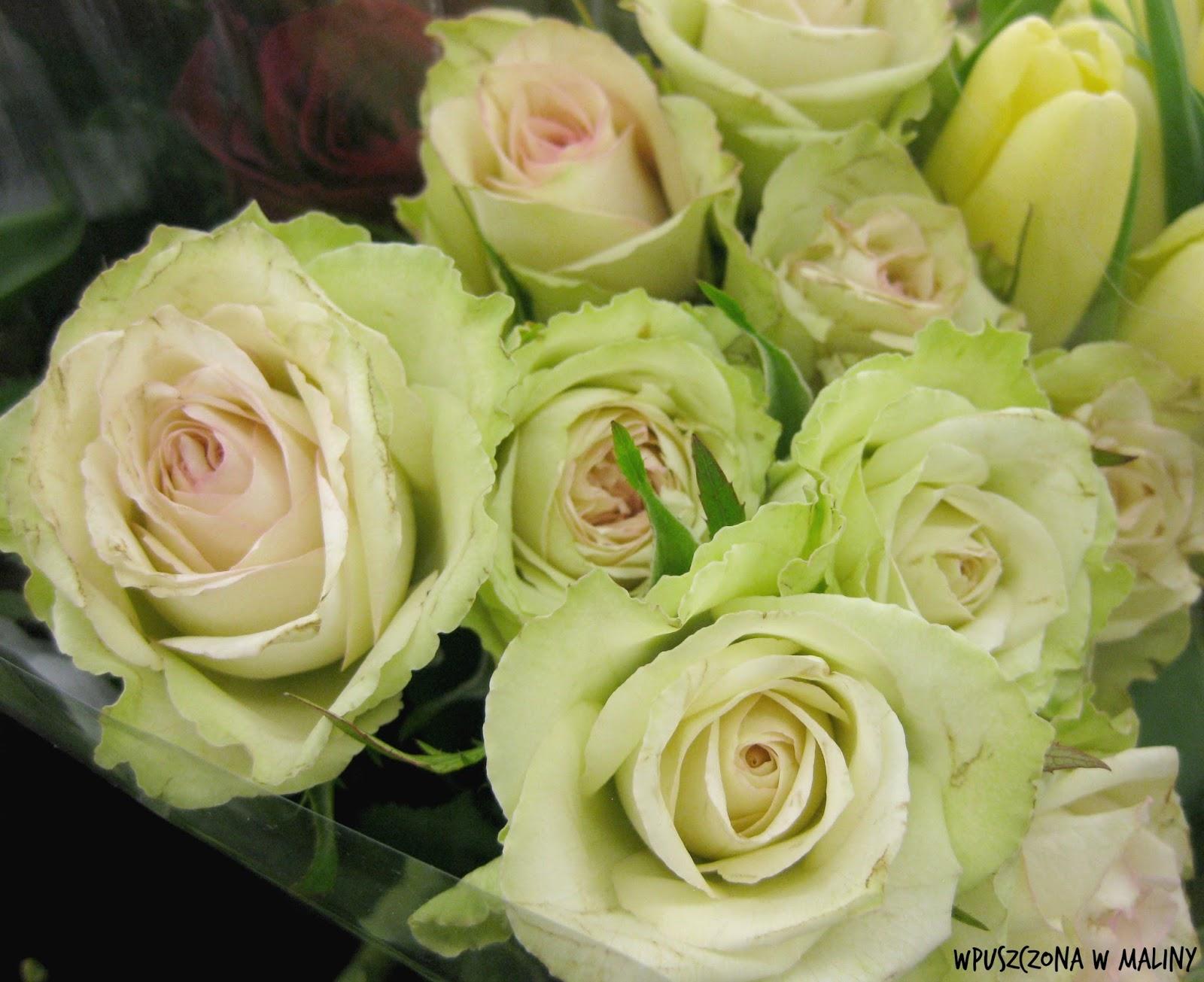 Wpuszczona W Maliny Jakie Kwiaty Cięte Wybrać Jak O Nie Dbać