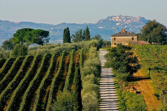 VIno Nobile di Montepulciano Tuscany