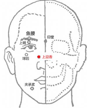 上迎香穴位 | 上迎香穴痛位置 - 穴道按摩經絡圖解 | Source:big5.wiki8.com