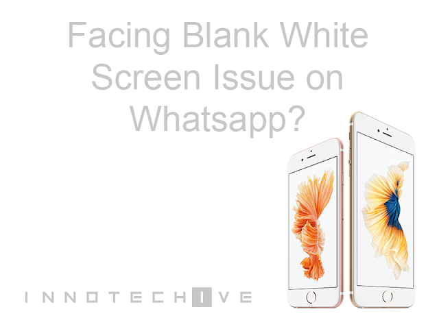 White Screen Whatsapp Issue