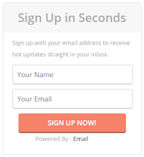 Stylish Email Subscribe Widget For website