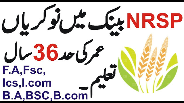 NRSP Bank Job 2019 Online Apply