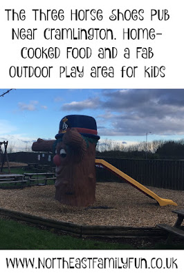 Three Horse Shoes, Horton - A Child-friendly pub with play area near Cramlington
