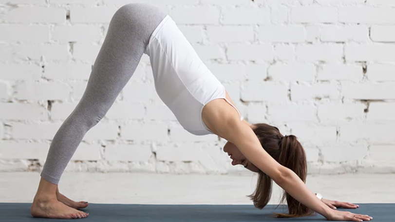 Adho Mukha Svanasana Or The Downward Facing Dog Pose