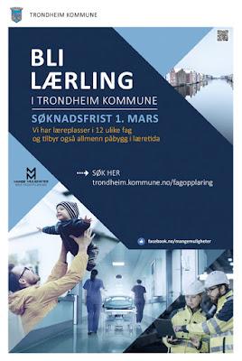 Bli lærling i Trondheim kommune