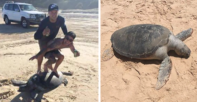 Apa yang Dilakukan Oleh Dua Orang Turis Ini Sungguh Bikin Netizen Geram.