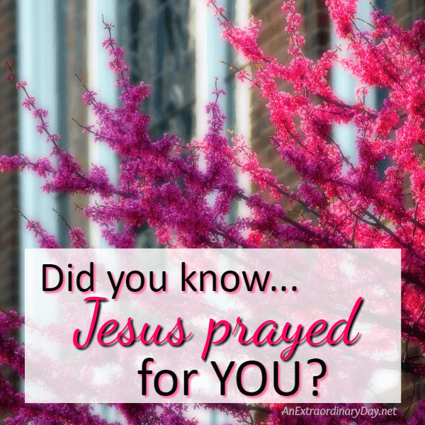 Did you know Jesus Prayed for you?