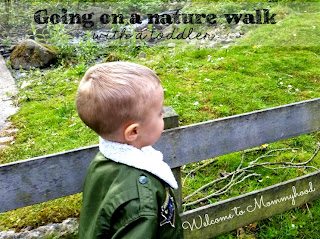 Nature walk tips by Welcome to Mommyhood #montessori, #toddleractivties, #outdoortoddleractivities