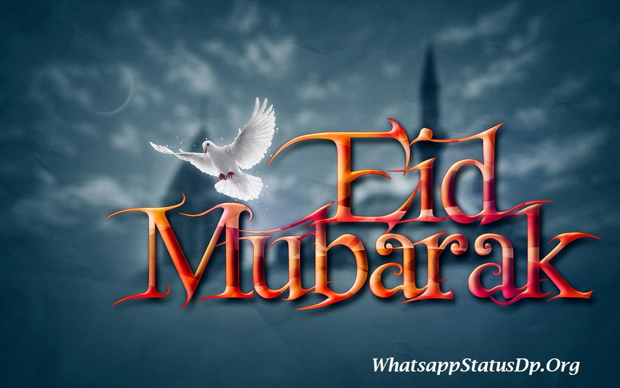 Wallpaper download for whatsapp - Bakra Eid Mubarak Whatsapp Dp Display Pictures
