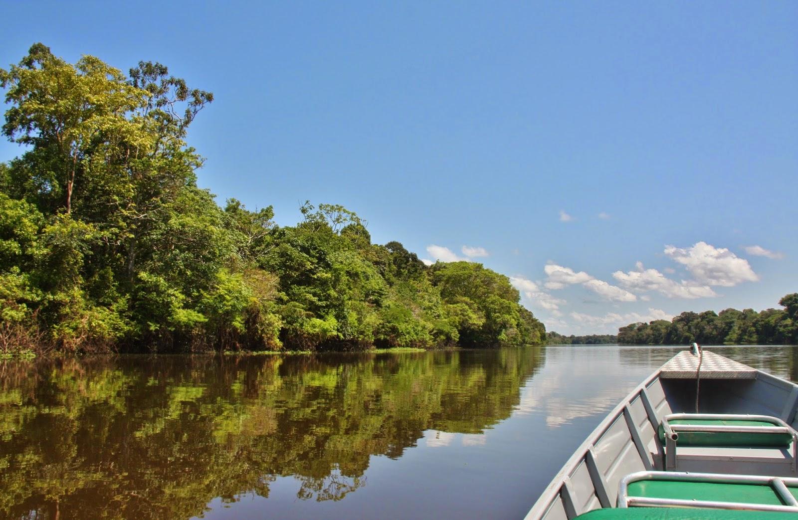 De barco pelo Rio Japurá, em Mamirauá.