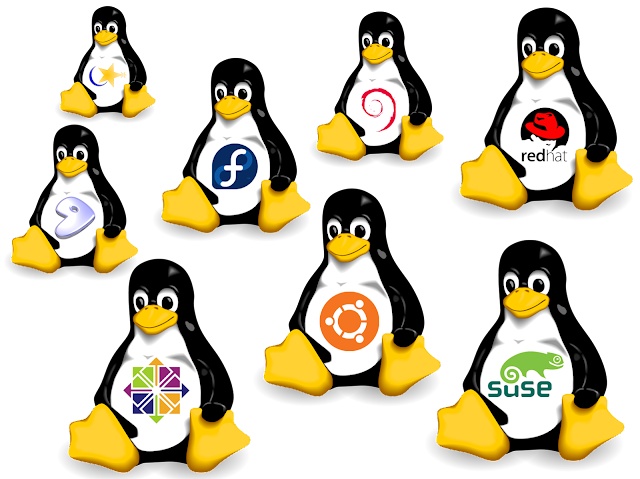 macam-macam varian Distro Linux lengkap