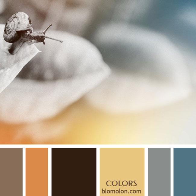 variedad_en_color_paletas_de_colores_76