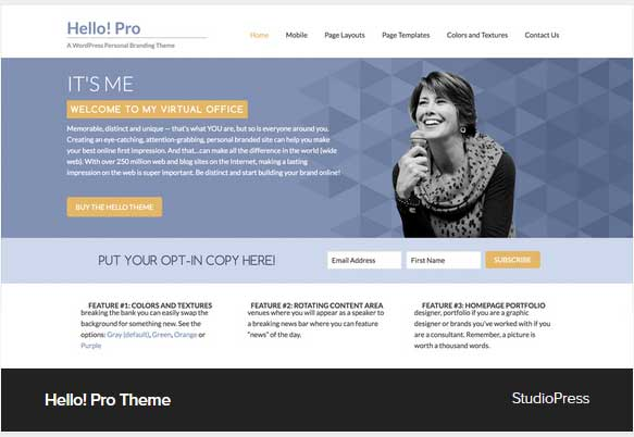 Hello Pro Theme Award Winning Pro Themes for Wordpress Blog : Award Winning Blog
