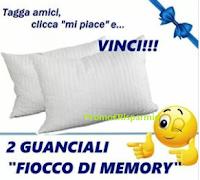 Logo Tagga, clicca e vinci gratis 2 guanciali Fiocco di Memory