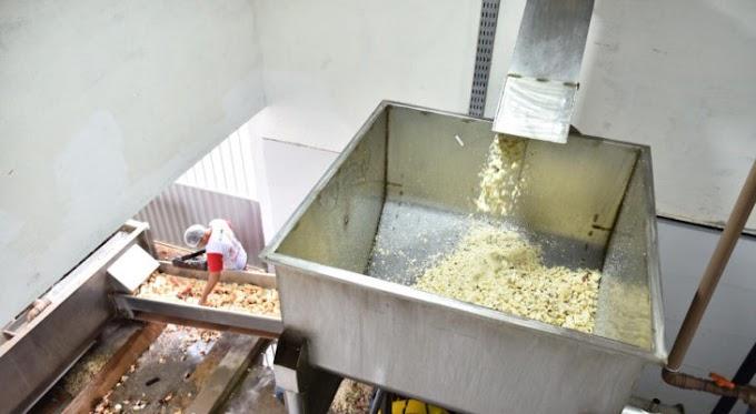 Nova fábrica de goma gera cerca de 1.400 empregos em Serra Caiada/RN