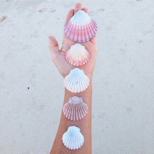 ideas de fotos para subir y arrasar en instagram este verano  conchas shells