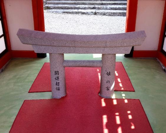 人文研究見聞録:大縣神社の開運招福鳥居くぐり