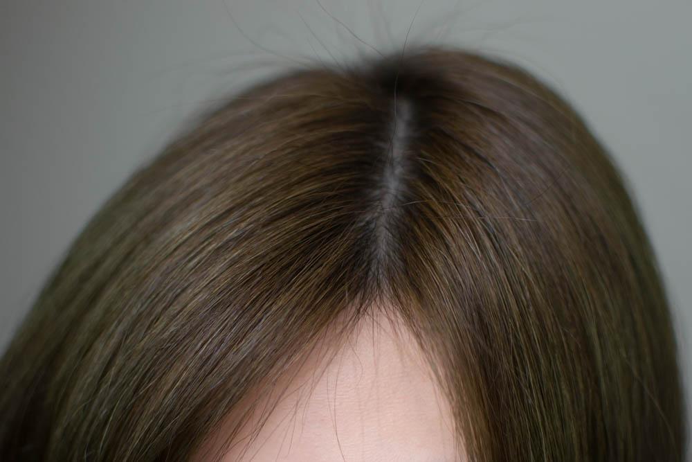 Review Korean Ezn Pudding Hair Color Ash Khaki Chubbylamb All