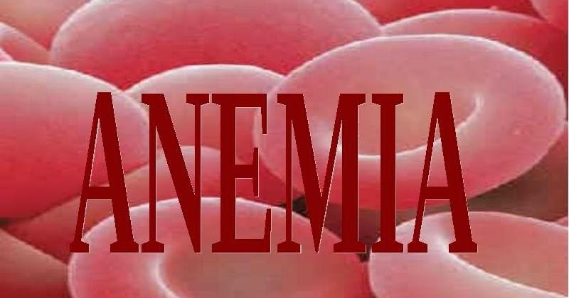 Hasil gambar untuk tanaman herbal untuk anemia