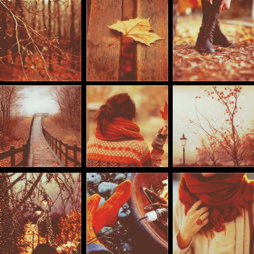 A Teaspoon of Love: Hello Autumn.