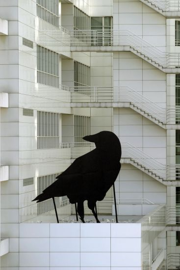 Escultura gigante de cuervo
