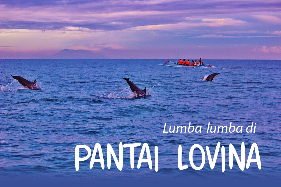 Lihat Lumba-Lumba di Pantai Lovina Bali, persewaan mobil di Bali, wisata pantai di Bali, lokasi wisata Bali, biaya tarif ke Pantai Lovina, biaya sewa perahu nelayan