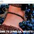 JUMILLA ESTRENA UNA WEB DE TURISMO MODERNA, INTUITIVA Y CON ENLACE PROMOCIONAL A UNA PÁGINA EN INGLÉS