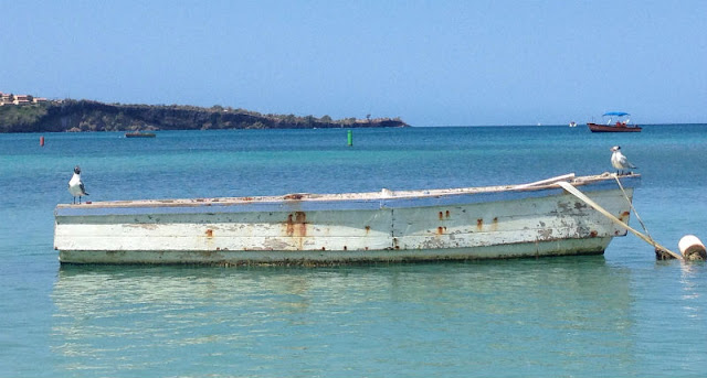Cool Things to do in Grenada