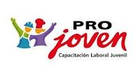 programa-de-capacitación-laboral-juvenil