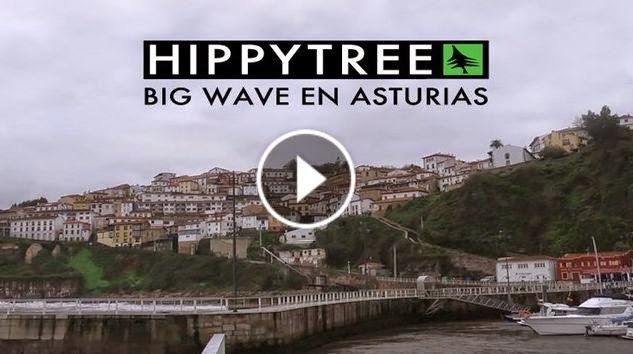Big wave en Asturias - La verdad - HippyTree -