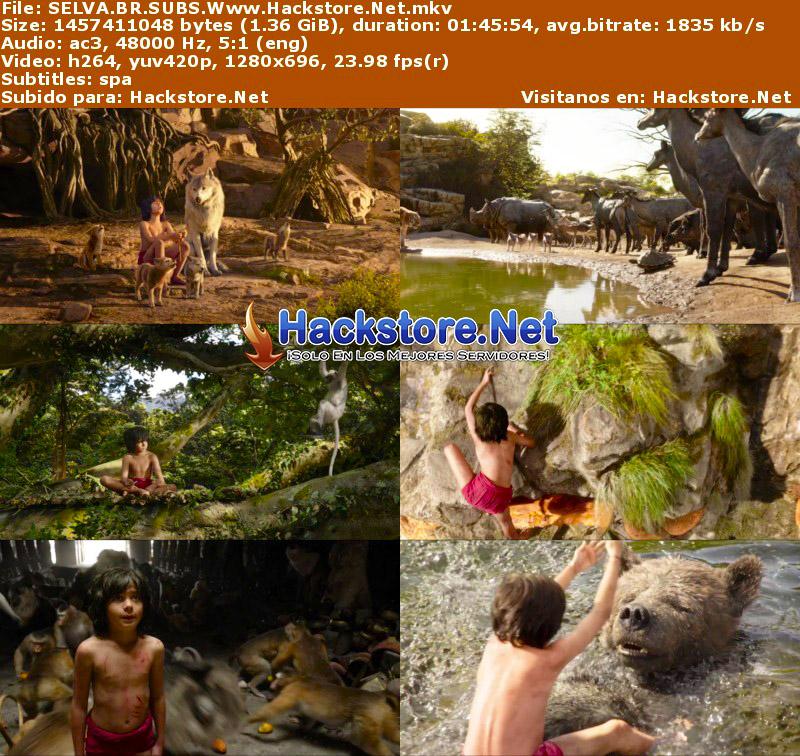 Capturas de El Libro de la Selva (2016) Blu-Ray RIP HD Subtitulada