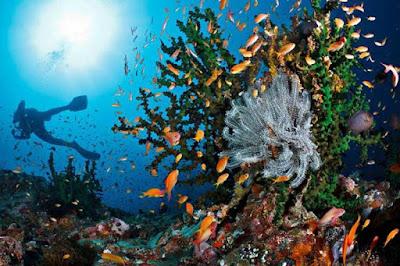 spot pulau weh